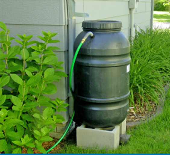 a green rain barrel placed near the side of a home in some landscaping
